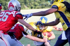 Football, Hildesheim Invaders gegen Cottbus Crayfish