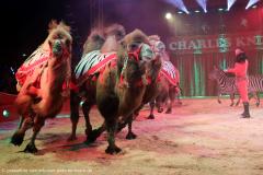 Reportage: Zirkus Charles Knie. Einbeck. 24.03.2017